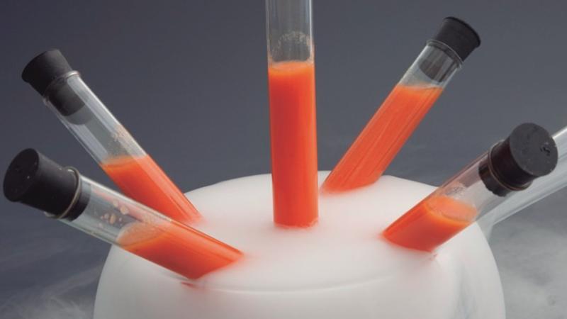 cocina molecular On equipo para cocina molecular