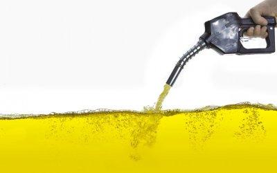 Biodiesel, una solución para el medio ambiente