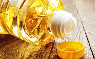 Transformarán aceite de cocina en biocombustible
