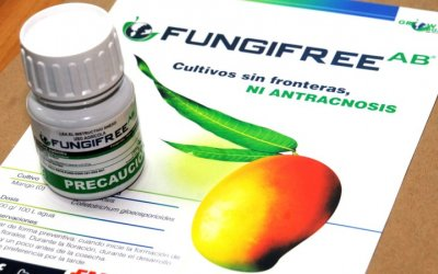 Certifican biofungicida creado por la UNAM