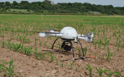 Agricultores buscan uso de drones