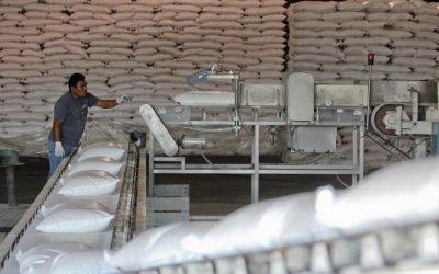 Fijan cupo máximo para exportar azúcar a EEUU