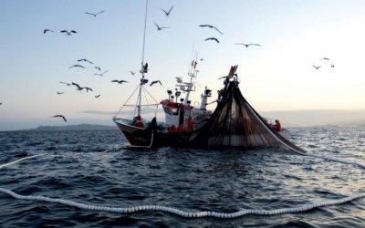 Foro Económico de Pesca y Acuicultura en el D.F.